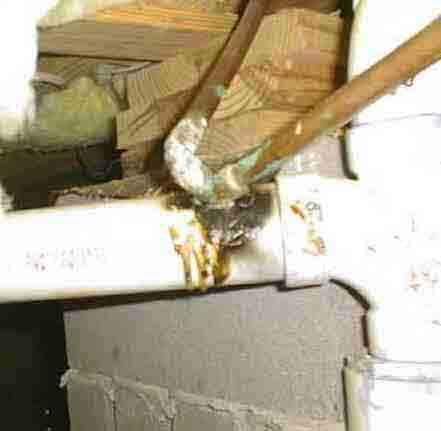 plumbingconnection